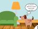 bienestar perros covid-19